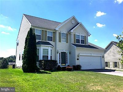 Chambersburg Single Family Home For Sale: 950 Alandale Drive