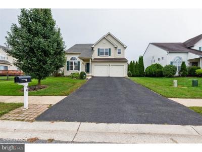 Bear Single Family Home For Sale: 40 Primrose Drive