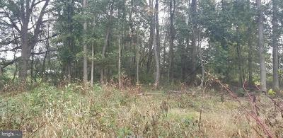 Residential Lots & Land For Sale: 797 Mahantango Drive