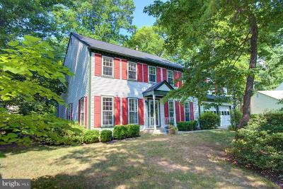 Reston Single Family Home For Sale: 1592 Stowe Road