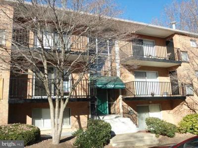 Woodbridge Rental For Rent: 12654 Dara Drive #201