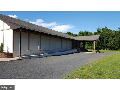 Bucks County Commercial For Sale: 987 River Road