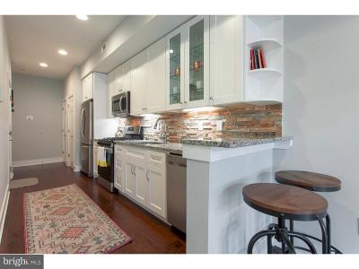 Northern Liberties Condo For Sale: 929 N 2nd Street #1