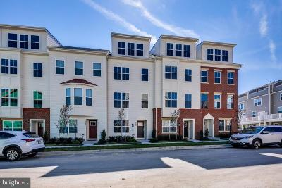 Howard County Townhouse For Sale: 7014 Rackham Way