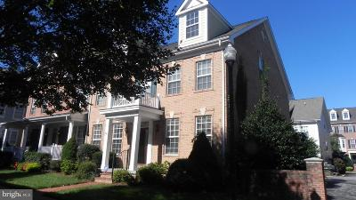 Prince William County Townhouse For Sale: 805 Monument Square