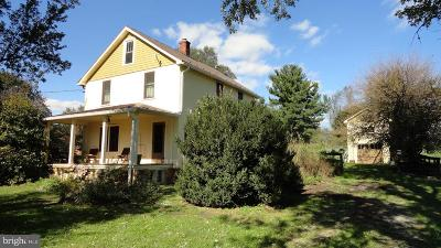 Loudoun County Single Family Home For Sale: 34090 Snickersville Turnpike