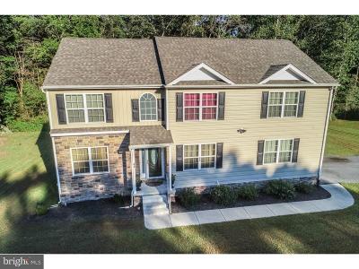 Felton Single Family Home For Sale: 43 Hunters Run Boulevard