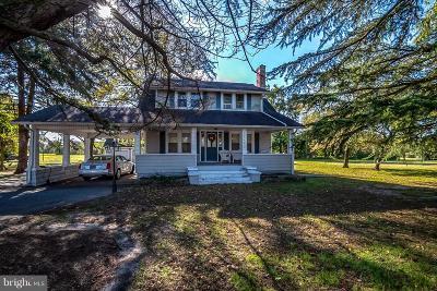 Dagsboro Commercial For Sale: 29482 Vines Creek Road