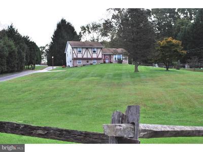 Coatesville Single Family Home For Sale: 1810 Goosetown Road