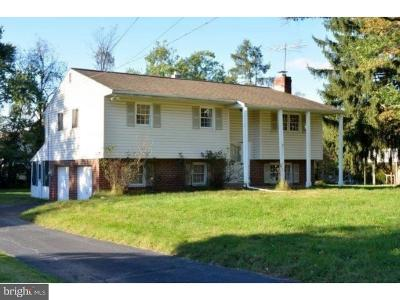 Phoenixville Single Family Home For Sale: 1296 E Evergreen Drive