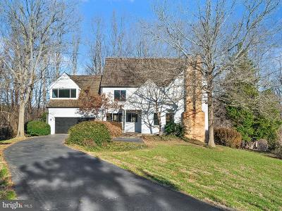 Great Falls Single Family Home For Sale: 9102 White Chimney Lane