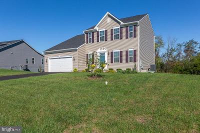 Culpeper Single Family Home For Sale: 15045 North Ridge Boulevard