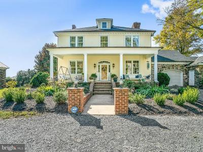 Loudoun County Single Family Home For Sale: 35175 Snickersville Turnpike