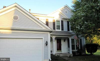 Owings Mills Single Family Home For Sale: 9809 Bridle Brook Drive