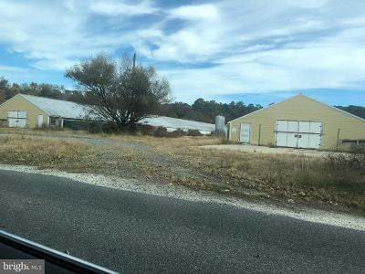 Wicomico County Farm For Sale: 9435 Melson Church Road