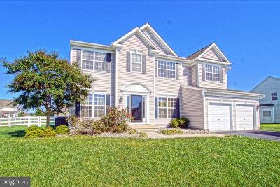 Single Family Home For Sale: 24759 Rivers Edge Road