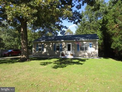 Cecil County Single Family Home For Sale: 199 Elk Forest Road