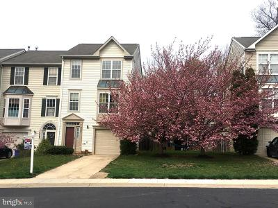 Montgomery County Townhouse For Sale: 19061 Sawyer Terrace