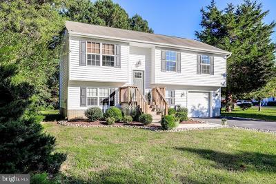 Mechanicsville Single Family Home For Sale: 29814 Grant Road