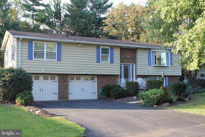 Waynesboro Single Family Home For Sale: 12085 Bayer Drive