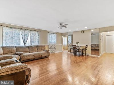 Silver Spring Condo For Sale: 11501 Amherst Avenue #2
