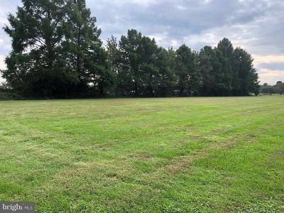 Bridgeville Residential Lots & Land For Sale: Blanchard Road