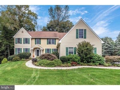 Downingtown Single Family Home For Sale: 210 Aran Glen Way