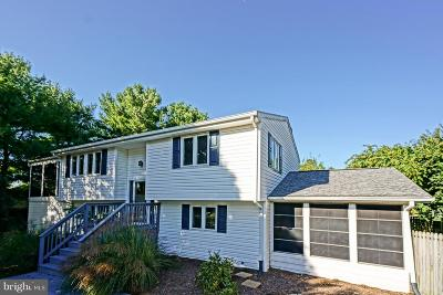 Rehoboth Beach Single Family Home For Sale: 129 Beachfield Drive
