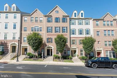 Howard County Condo For Sale: 7295 Elkridge Crossing Way