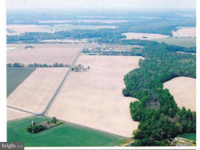 Milford Farm For Sale: Lot Deer Valley Road