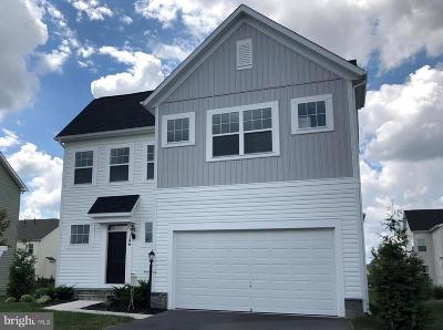 Single Family Home For Sale: 146 Blackford Drive