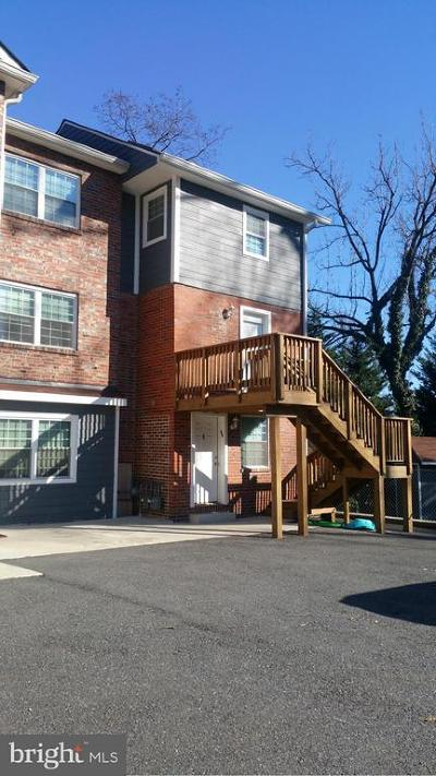 Silver Spring Rental For Rent: 828 Bonifant Street #A