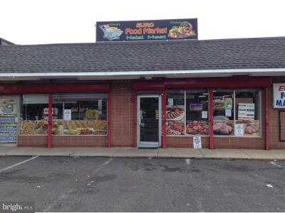 Bucks County Commercial For Sale: 1566 Haines Road