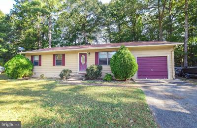 Lexington Park Single Family Home For Sale: 21620 America Street