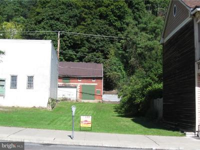 Commercial For Sale: 521 Centre Street