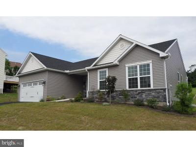 Sinking Spring Single Family Home For Sale: 109 Great Bend Way