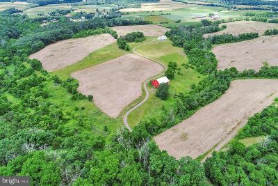 Residential Lots & Land For Sale: 699 Stone Church Road