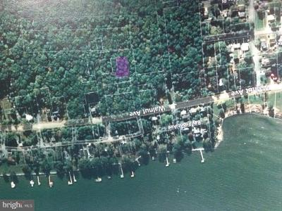 North Beach Residential Lots & Land For Sale: 700 Maple Avenue