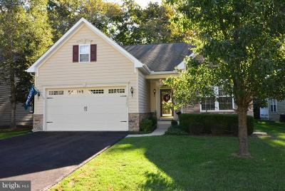Single Family Home For Sale: 32731 Spring Water Drive