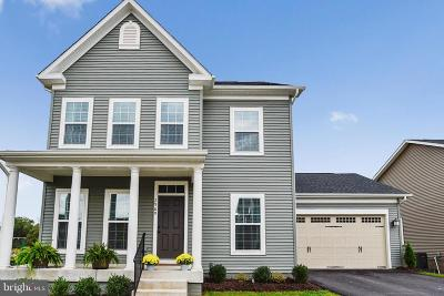 Fauquier County Single Family Home For Sale: 2960 Revere Street
