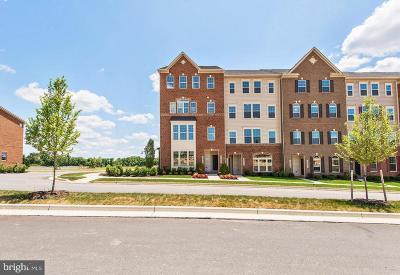 Clarksburg Condo For Sale: 22046 Cabin Branch Avenue
