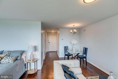 Washington Condo For Sale: 300 M Street SW #N802