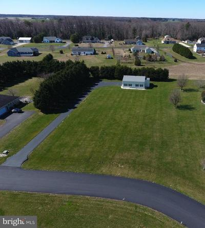 Seaford Residential Lots & Land For Sale: 301 Christopher Dr.