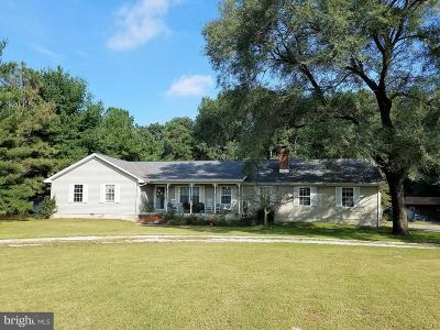 Georgetown Single Family Home For Sale: 13003 Old Furnace Road
