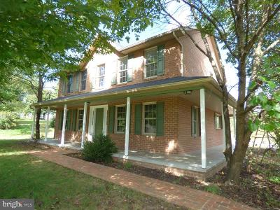 Hagerstown Single Family Home For Sale: 17022 Castle Hill Road