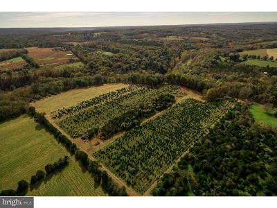 Bucks County Residential Lots & Land For Sale: Hollow Horn Road