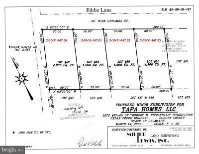 Kent County, New Castle County, Sussex County, KENT County Residential Lots & Land For Sale: Willow Street