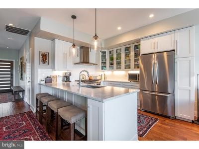 Philadelphia Single Family Home For Sale: 4256 Terrace Street