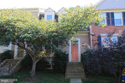 Fairfax Rental For Rent: 4209 Sleepy Lake Drive