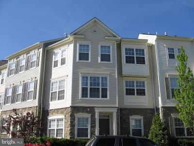 Ashburn Rental For Rent: 21800 Dragons Green Square